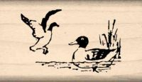 Duck & Decoy Rubber Stamp