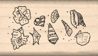 Shells Rubber Stamp