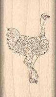 Ostrich Rubber Stamp